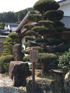 南方熊楠が三年間滞在した大阪屋旅館跡