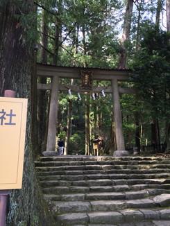 飛瀧神社 鳥居