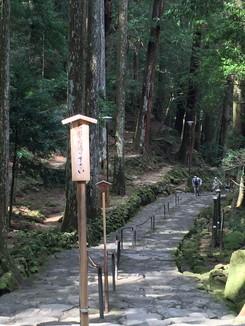 那智の滝へ向かう石段