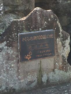 紀三井寺 さくら名所100選の地