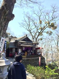 松樹院(身代わり地蔵)