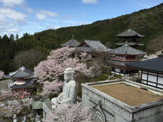 石像のある辺りから壺坂寺を望む