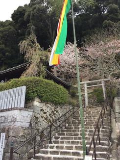 愛染堂への石段