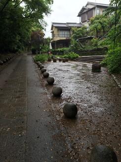 さわらびの道 大吉山の登山口付近