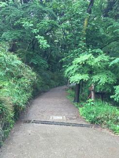 大吉山 登山口