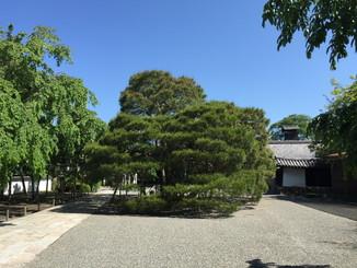 三宝院の前庭