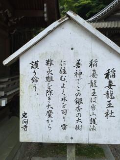 稲妻龍王社