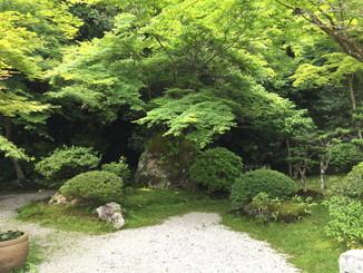 淳浄館の前庭