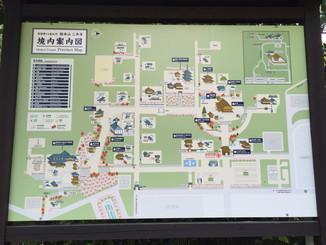 西国第14番札所 総本山 三井寺 境内案内図