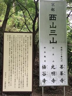 京都 西山三山