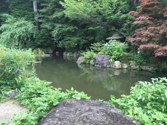 薬師堂裏手の池