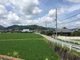 穴太寺までの田園風景