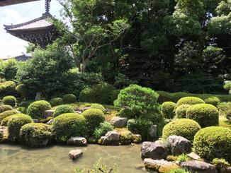 円応院の庭園