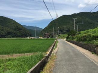 トロッコ亀岡駅の周辺は田園