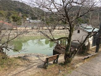 久美子ベンチ周辺