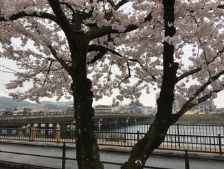 京阪宇治駅前 宇治橋を望む